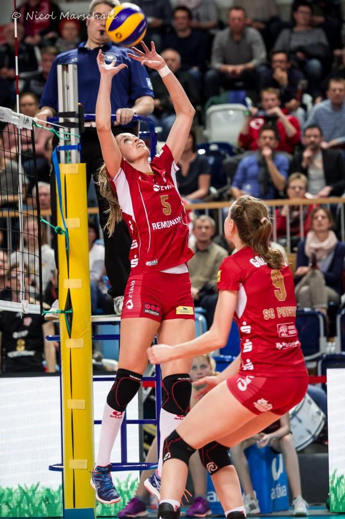 volleyball bundesliga live